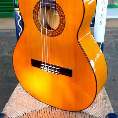 Francisco Barba Flamenco guitar  1990  Estudio  Honey for sale