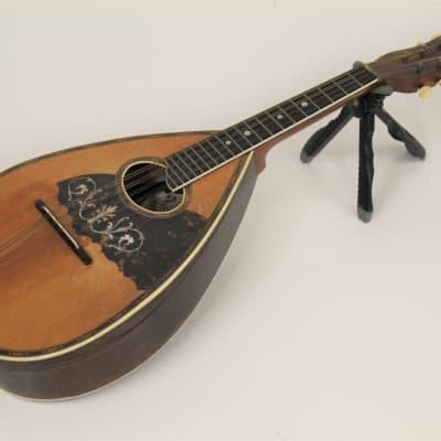 William Stahl Bent Top Mandolin for sale