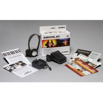 Yamaha Survival Kit SK D2 for NP-V60, NP31, PSR-E443 , and YPG-235 Keyboards
