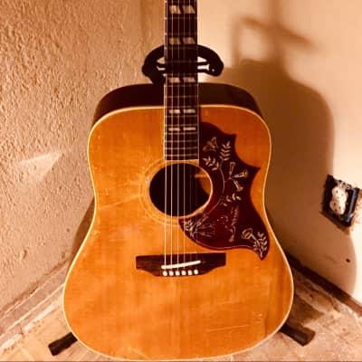 Gibson Hummingbird 1960s Natural
