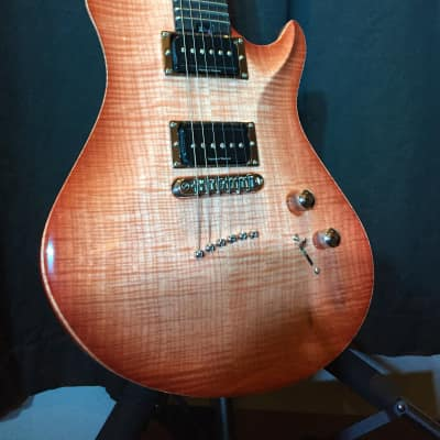 Warrior Signature Isabella 2007 Sam Ash Music (One of a Kind) for sale