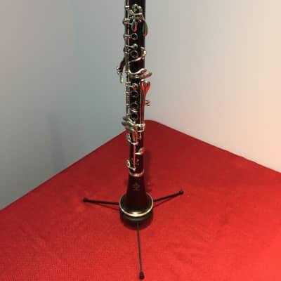 Buffet R13 Bb Professional Clarinet