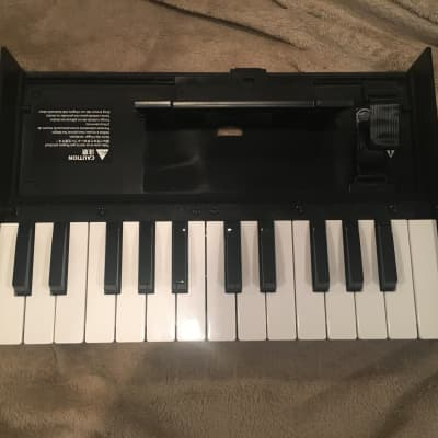Roland Boutique Portable Keyboard