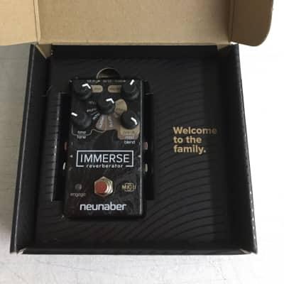 Neunaber Audio Immerse Mk II Reverberator