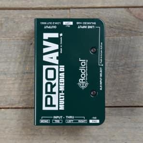 Radial Pro AV1 Passive DI MINT