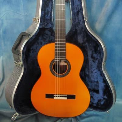 Amalio Burguet Negra 003 Classical Guitar 2017 Natural finish w/ Hardcase for sale