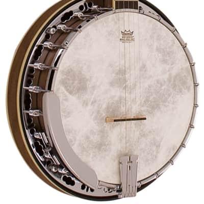 Barnes & Mullins Banjo 5 String Empress Model for sale