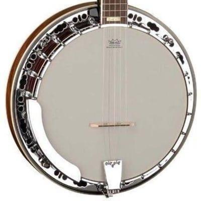 Washburn Americana Series B11K Bluegrass 5-String Banjo with Hardshell Case for sale