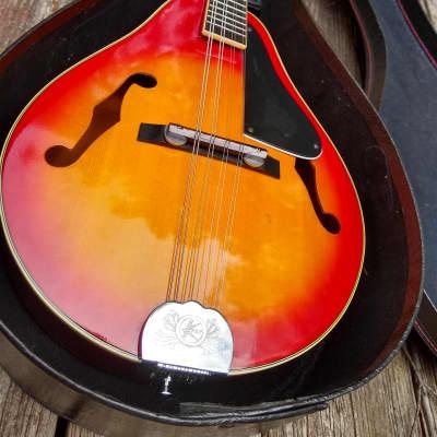 Kay 1987 Vintage Mandolin MAND-20 American Heritage Series for sale