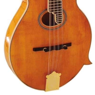 Barnes & Mullins BM700 Piercy Mandolin for sale