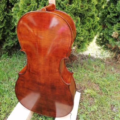 Advanced Student Stradivari 4/4 Hand-made from solid wood