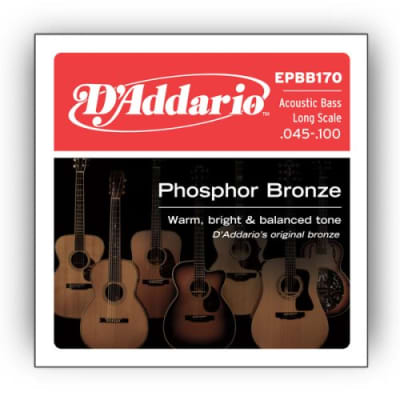 D'Addario EPBB170 Acoustic Bass LS Strings, .045 - .100