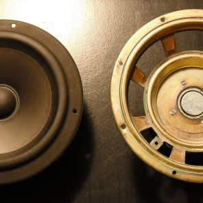 Paradigm Titan speaker assembly | Nogolopolis | Reverb