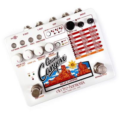 Electro-Harmonix Grand Canyon Multi Delay Effects Pedal w/ Tap Tempo | Open Box