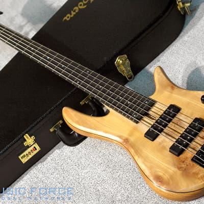 Fodera Monarch 5 Standard Special LTD - Maple Burl Top w/Ebony FB for sale