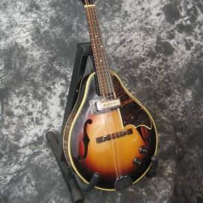 Vintage Norma EM-650 A-style acoustic-electric mandolin for sale