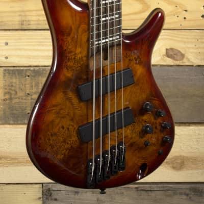 Ibanez Bass Workshop SRMS805 - Brown Topaz Burst for sale