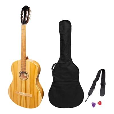 Martinez 'Slim Jim' Full Size Electric Classical Guitar Pack with Pickup/Tuner (Jati-Teakwood) for sale