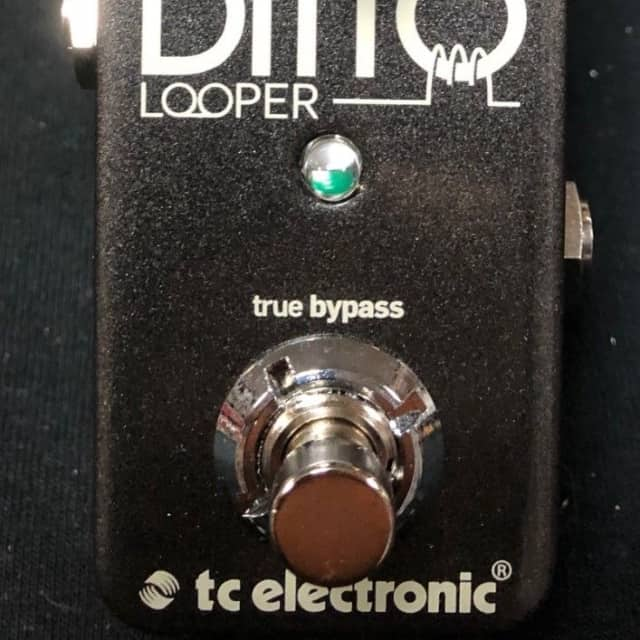 TC Electronic Ditto Looper Guitar Effects Pedal Authorized Dealer image