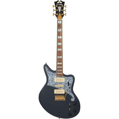 D'Angelico Deluxe Bob Weir Signature Bedford