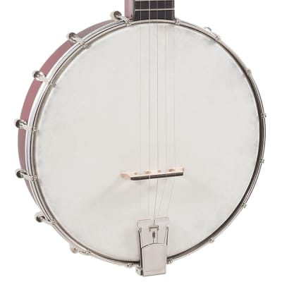 Recording King Open Back Dirty 30's 5 String Banjo for sale