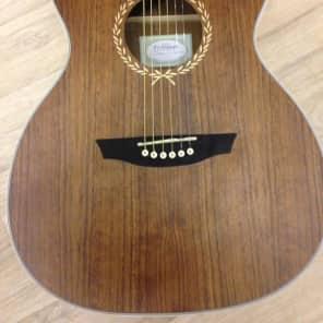 Freshman Limited Edition Walnut Folk Size Guitar for sale