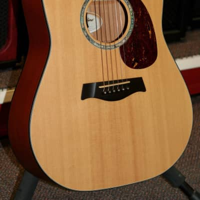 Timberline T30-D  Mahogany Back & Side Solid Tone Wood Natural Satin Finish With L.R.Baggs Pick Up for sale