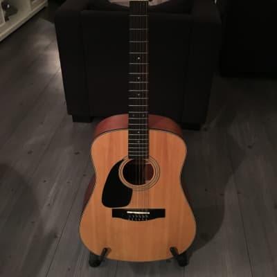 Samick SW250 LH-12 Aspen - Artist Edition - 12-string Guitar for sale