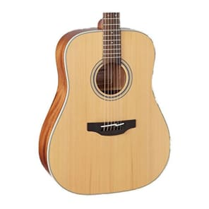 Takamine GD20-NS Dreadnought Acoustic Guitar, Natural for sale