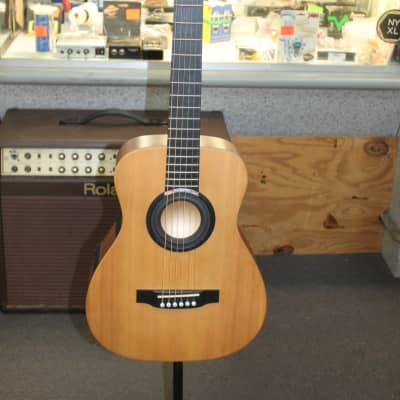 Martin ICOUSTIC LITTLE MARTIN LX1 GUITAR PROFESSIONAL PACKAGE
