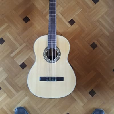 Akustikgitarre zum Üben for sale
