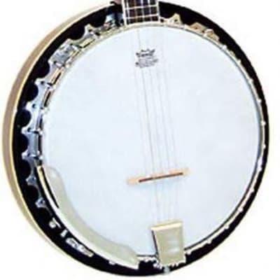 Ashbury 5 String Banjo-GR37021 resonator, mahogony for sale