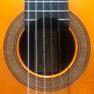 Pedro de Miguel Flamenco Guitar 1998 for sale