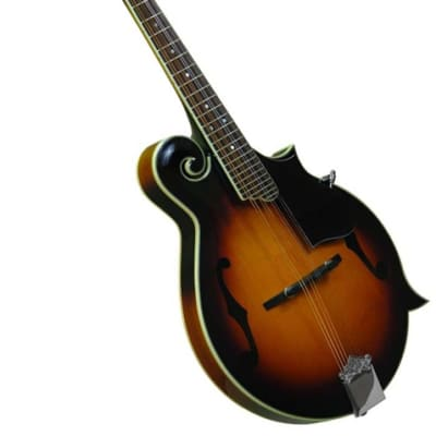 Gold Tone GM-35 F-Style Mandolin for sale