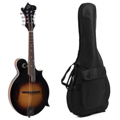 The Loar LM-520 Performer F-Style Mandolin +12mm Padded Bag