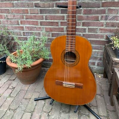 Shiro (Aria) guitar 6510 1965 for sale