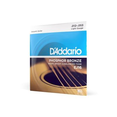 D'Addario EJ16 Phosphor Bronze Light Acoustic Guitar Strings, 12-53 2021 Bronze