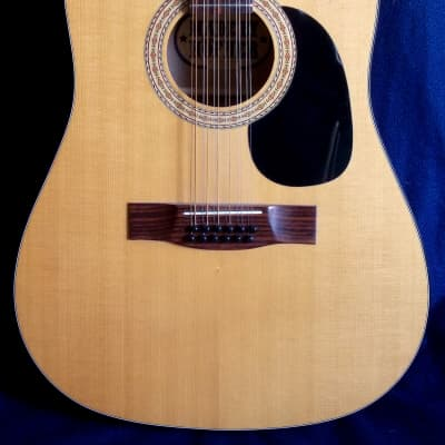 HOFNER 490  12 strings 1980
