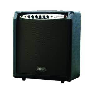 Kona 30-Watt Bass/Keyboard Amplifier w/ 10