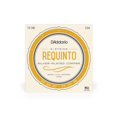 D'Addario EJ94 Silver-Plated Copper 22-36 6-String Requinto Strings