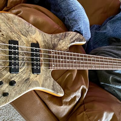 Fodera Emperor Elite 5-string for sale