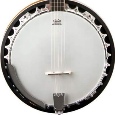 Washburn Model B9 5-String Closed-back Mahogany Bluegrass Banjo for sale