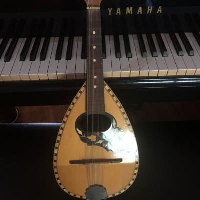 Vintage Catania Carmelo 2 Mandolin 1974 for sale