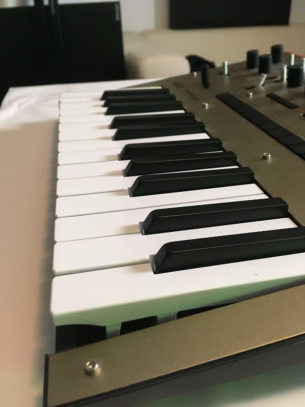 korg monologue monophonic analog synthesizer 2010s gold reverb. Black Bedroom Furniture Sets. Home Design Ideas