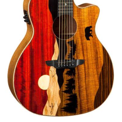 512f6e9afb6 Luna Vista Bear Tropical Wood Gloss Natural Acoustic Electric Guitar w/case  - Free Shipping
