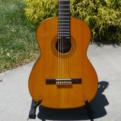 Toshihiko Tokugawa VII 1976 classical guitar 1976 Spruce/BRW for sale