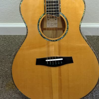 Harvey Leach CM-248 Brazillian Sapped Rosewood Boutique Guitar - Boutique Hand Made for sale