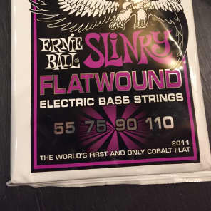 Ernie Ball 2802 Flatwound Group I Electric Bass Strings (55-110)