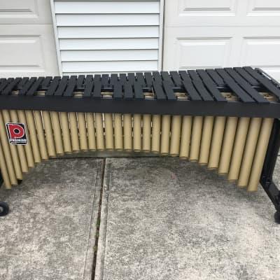 Premier 4.3 Octave Concert Marimba - Height Adjustable