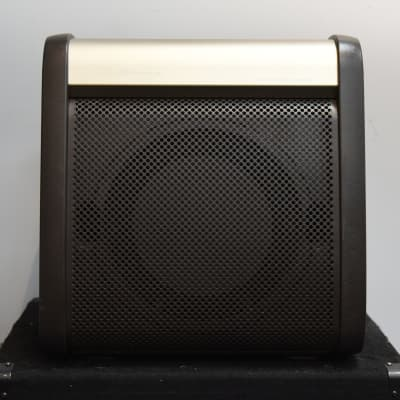 LR Baggs Acoustic Reference Amp for sale